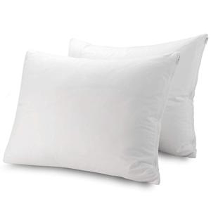 Guardmax - Bedbug Proof/Waterproof Pillow Protector